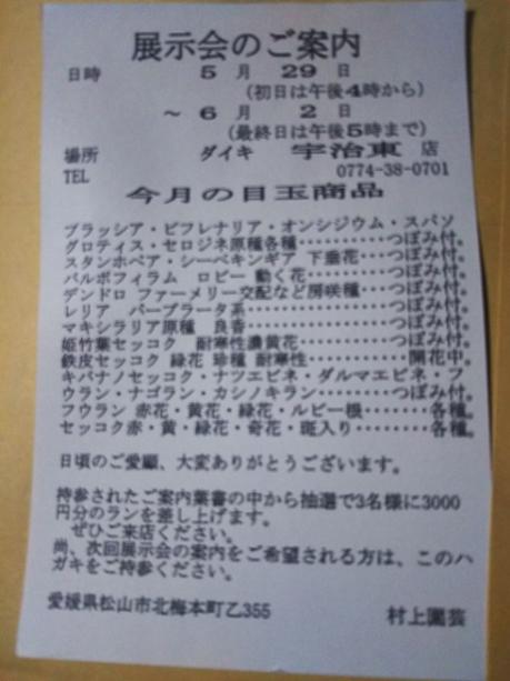 Dsc_1669_1